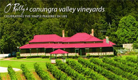 O'Reilly's Canungra Valley Vineyards under vine