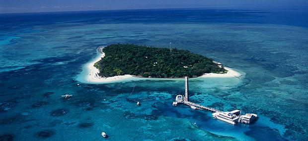 凯恩斯-绿岛-大堡礁-大猫号-一日游-大冒险号