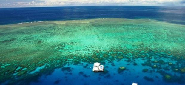 澳大利亚-凯恩斯-大堡礁-诺曼礁-大冒险号-外堡礁-一日游