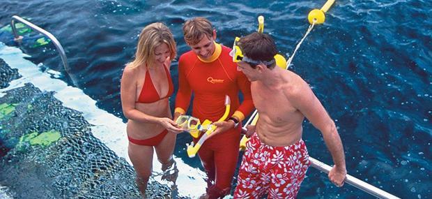 道格拉斯港-大堡礁-平台-浮浅